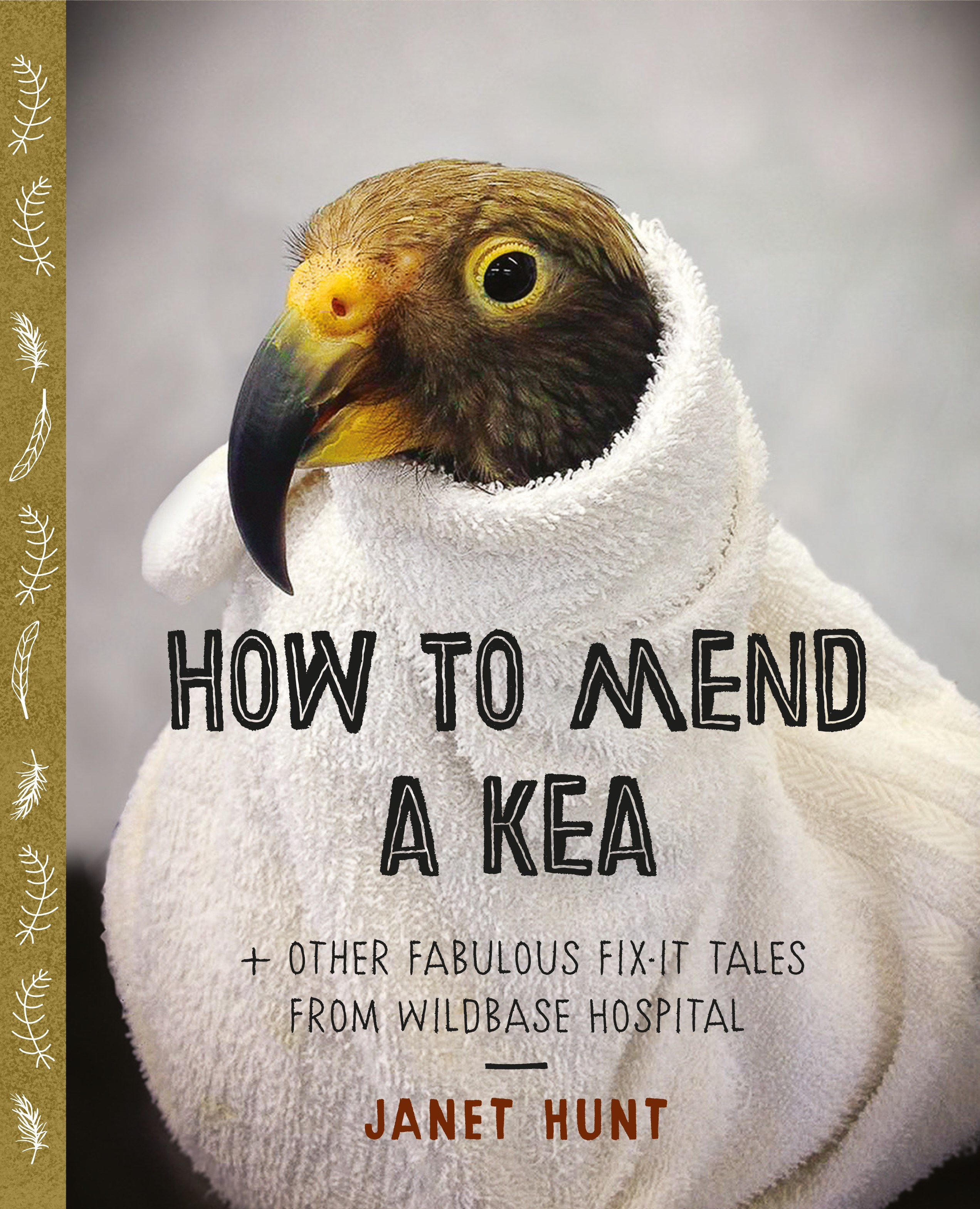 book cover for How to Mend a Kea
