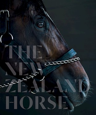 book cover for The New Zealand Horse